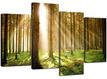 Sun Light Trees Forest 4 Piece Canvas Wall Art Home Decor Multi Panel Four