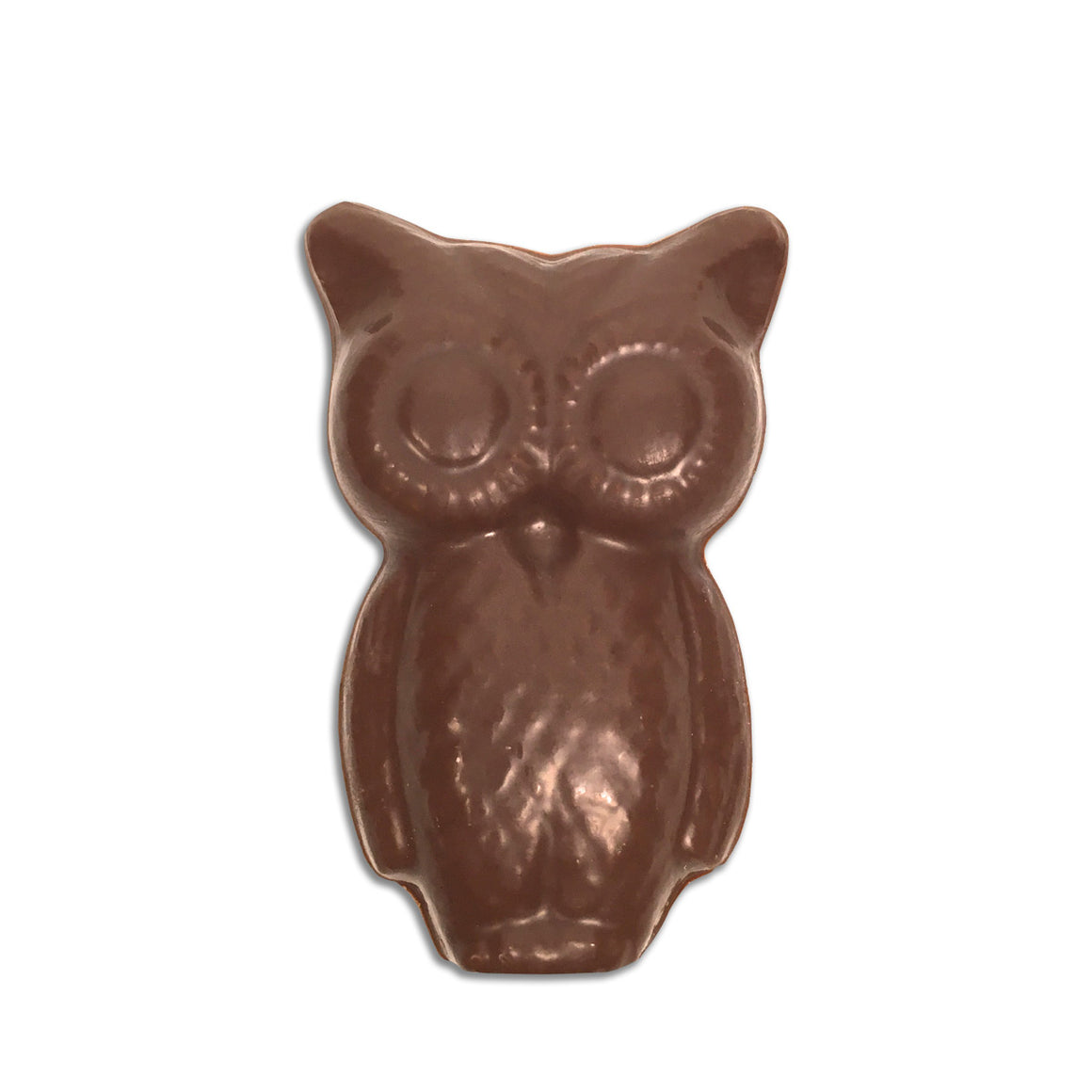 Heddie The Chocolate Post Owl