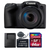 Canon PowerShot SX430 IS 20MP Digital Camera Black with 64GB Memory Card