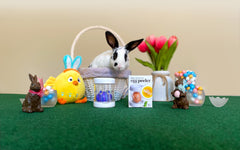 Easter Traditions, Eggs & Bunnies - Fun Facts