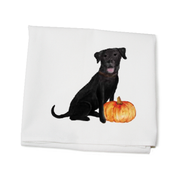 lab with pumpkin