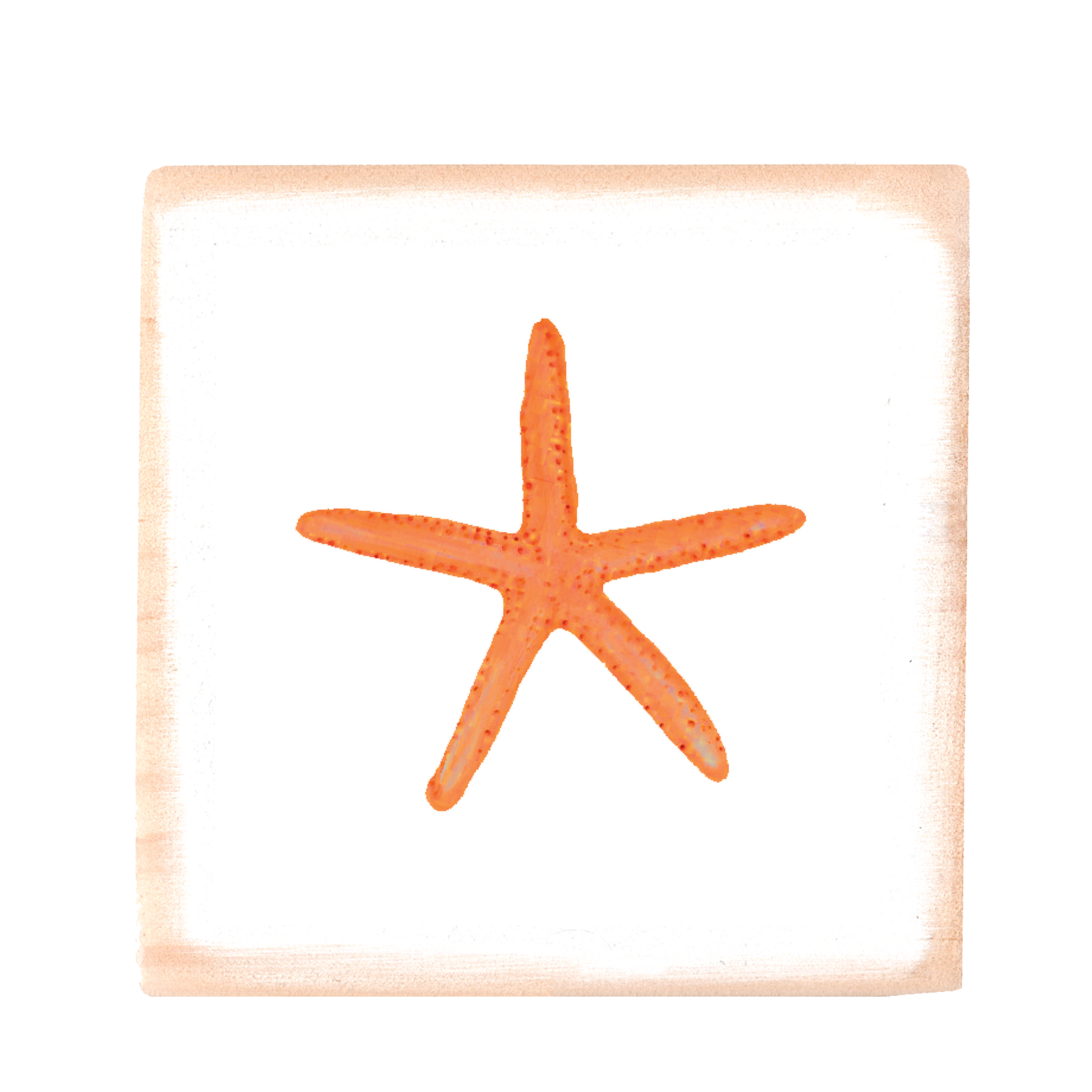 starfish orange