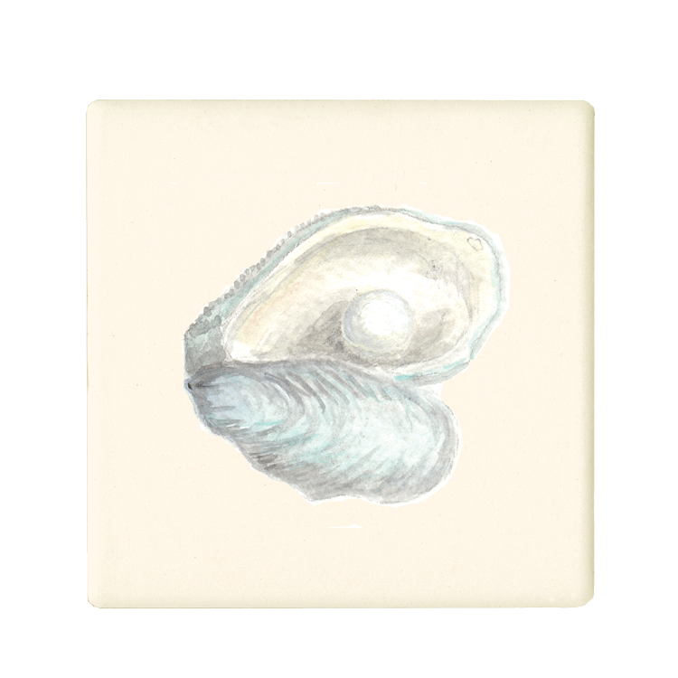 oyster + pearl