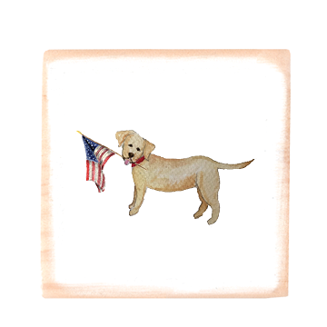yellow lab with flag