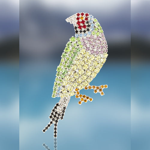 Gouldian Finch Pin with Swarovski Crystal Stones by Albert Weiss