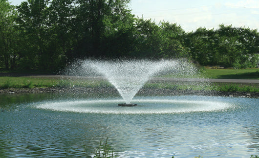 2 HP Kasco Aerating Fountain, 230 volt