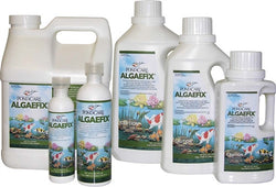 Algaefix, 64 oz.