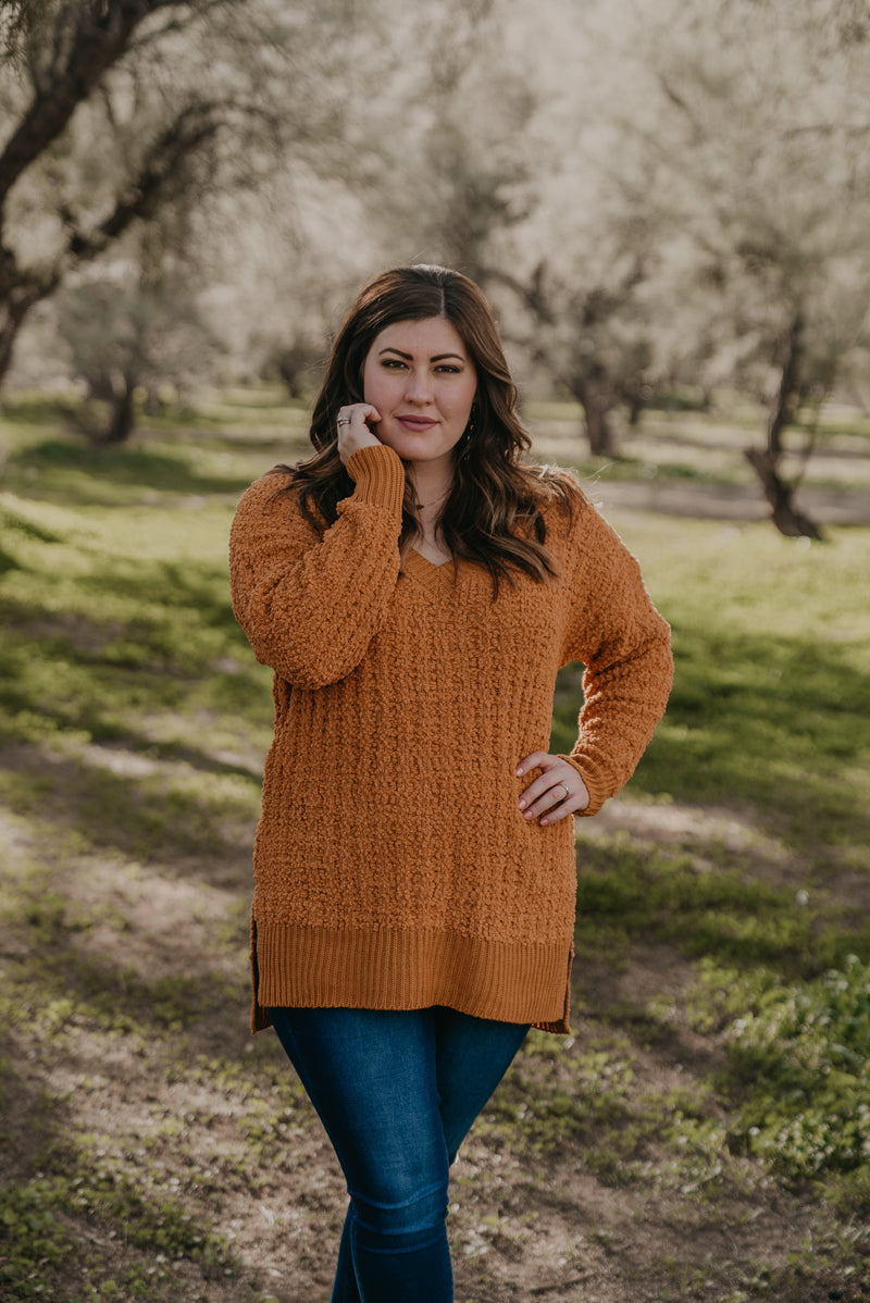 WI Basics: The Orya V-Neck Sweater in Mustard (Sizes S-3X)