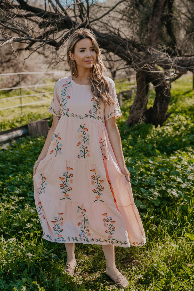 The Beau Embroidered Dress in Blush