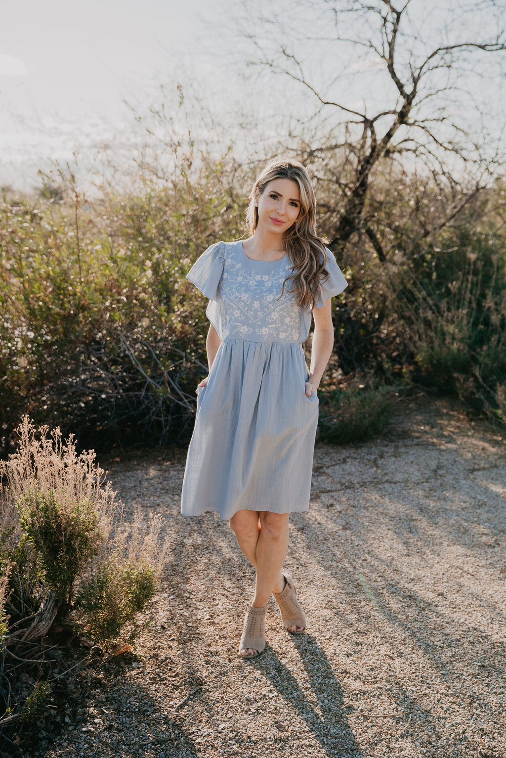 The Breelyn Embroidered Dress in Dusty Blue