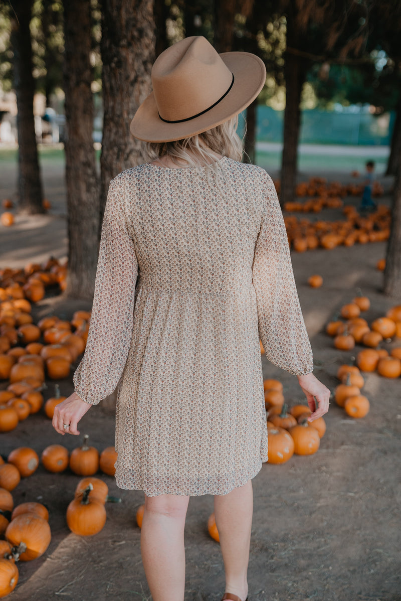 The Camber Embroidered Dress in Taupe