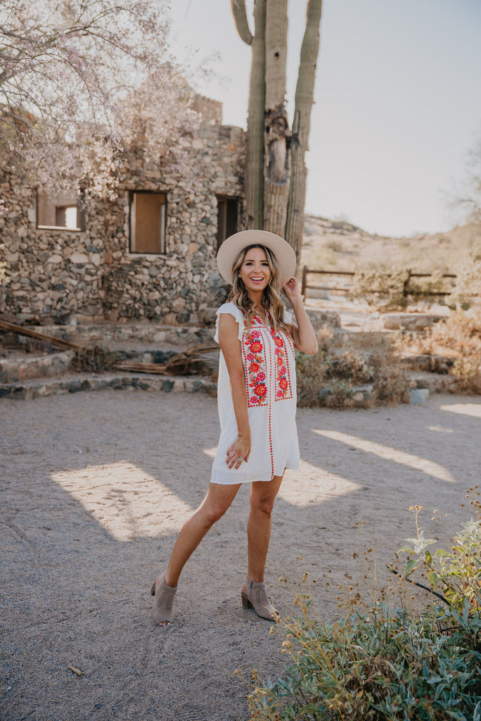 The Ana Sofia Embroidered Dress in Ivory