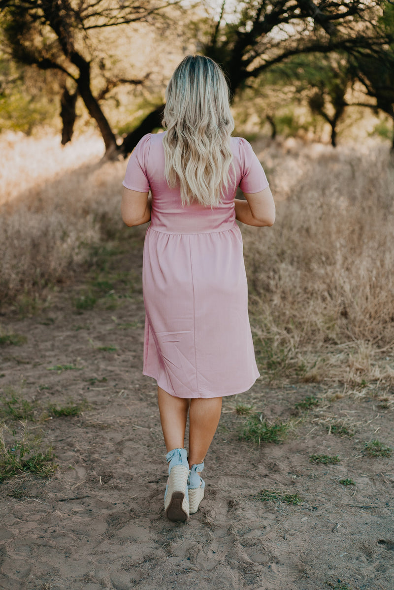 The Nina V-Neck Dress in Blush