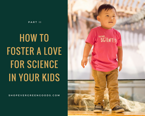 How to foster a love of science: Part 2