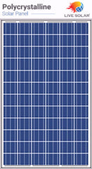 Live Solar Poly PV Panel 300w - 72P