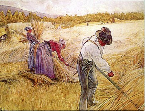 Boxed Note Cards, Carl Larsson Gathering hay