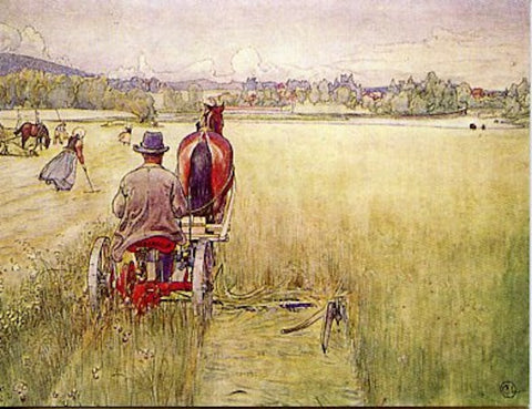 Boxed Note Cards, Carl Larsson Hay field