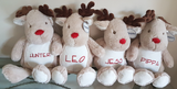 Christmas Reindeer with Personalised Name - Awareness for DIPG