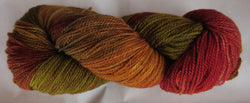 Fine Merino - Fine Sport Weight Yarn -  Autumn Earth