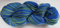 Polwarth Wool - Sport Weight - Mix #PO-11