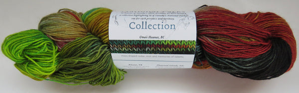 Fleece Artist National Parks Collection - Festival Socks -  Gwaii Haanas, BC