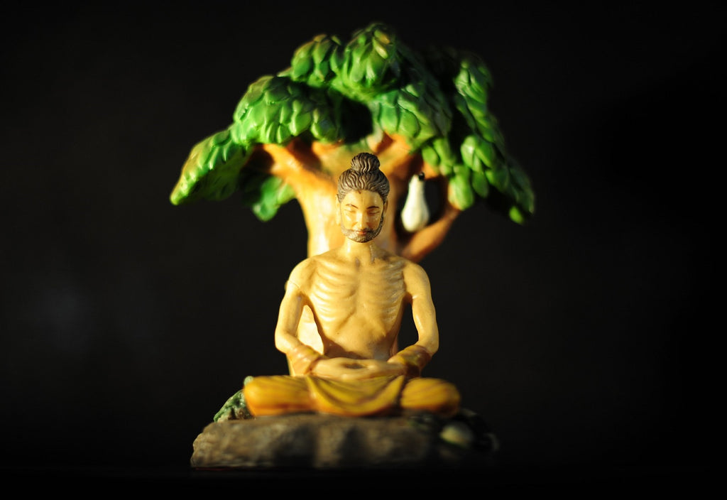 What Does The Bodhi Tree Symbolize In Buddhism?