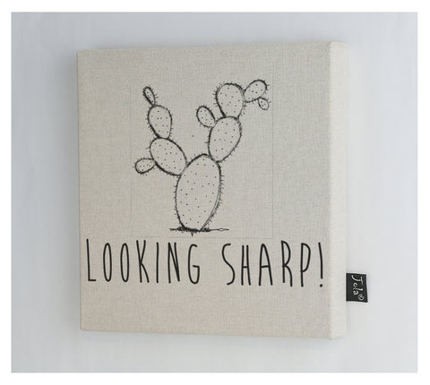 Looking Sharp Canvas Frame