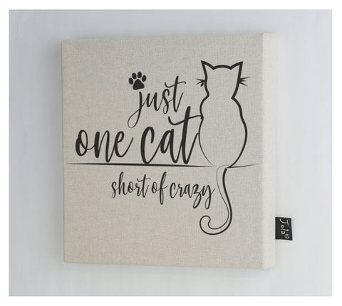 One cat short of crazy Canvas Frame