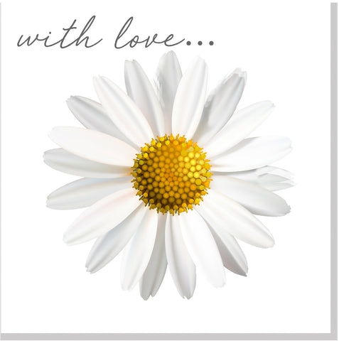 With love Daisy square card
