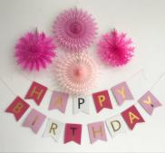 Happy Birthday Banner Set - Pinks with Crepe Paper Flowers