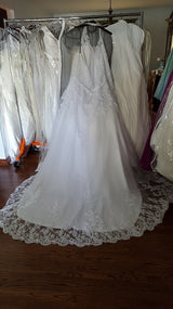 Izlady Lace Ball Gown