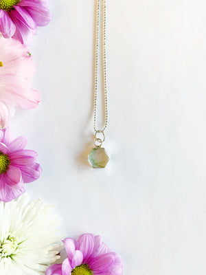 Tille Silver Hexagon Necklace with Asparagus Fern