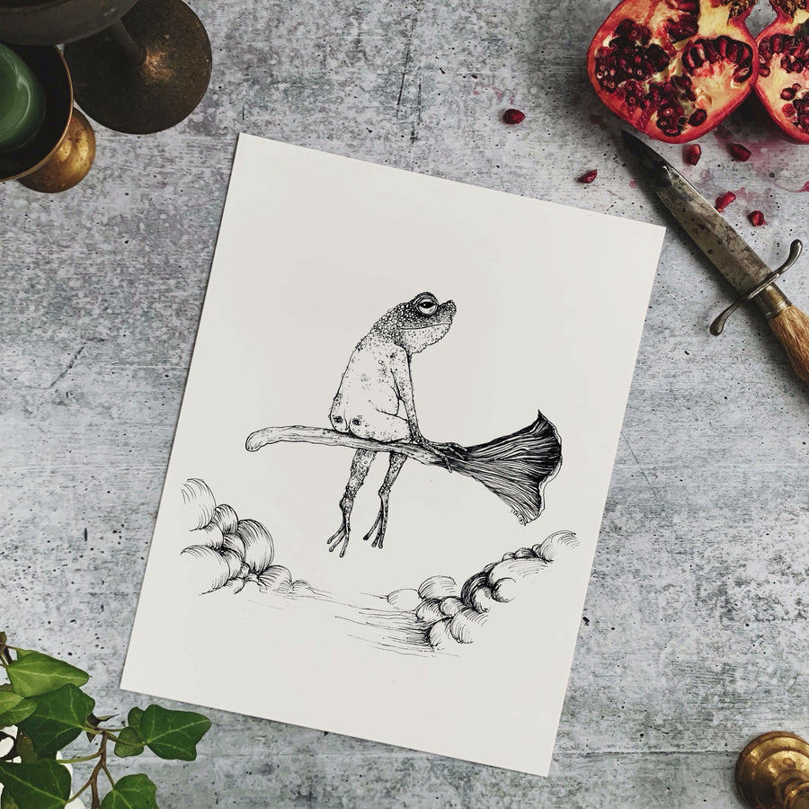 The Toad Witch Fine Art Print