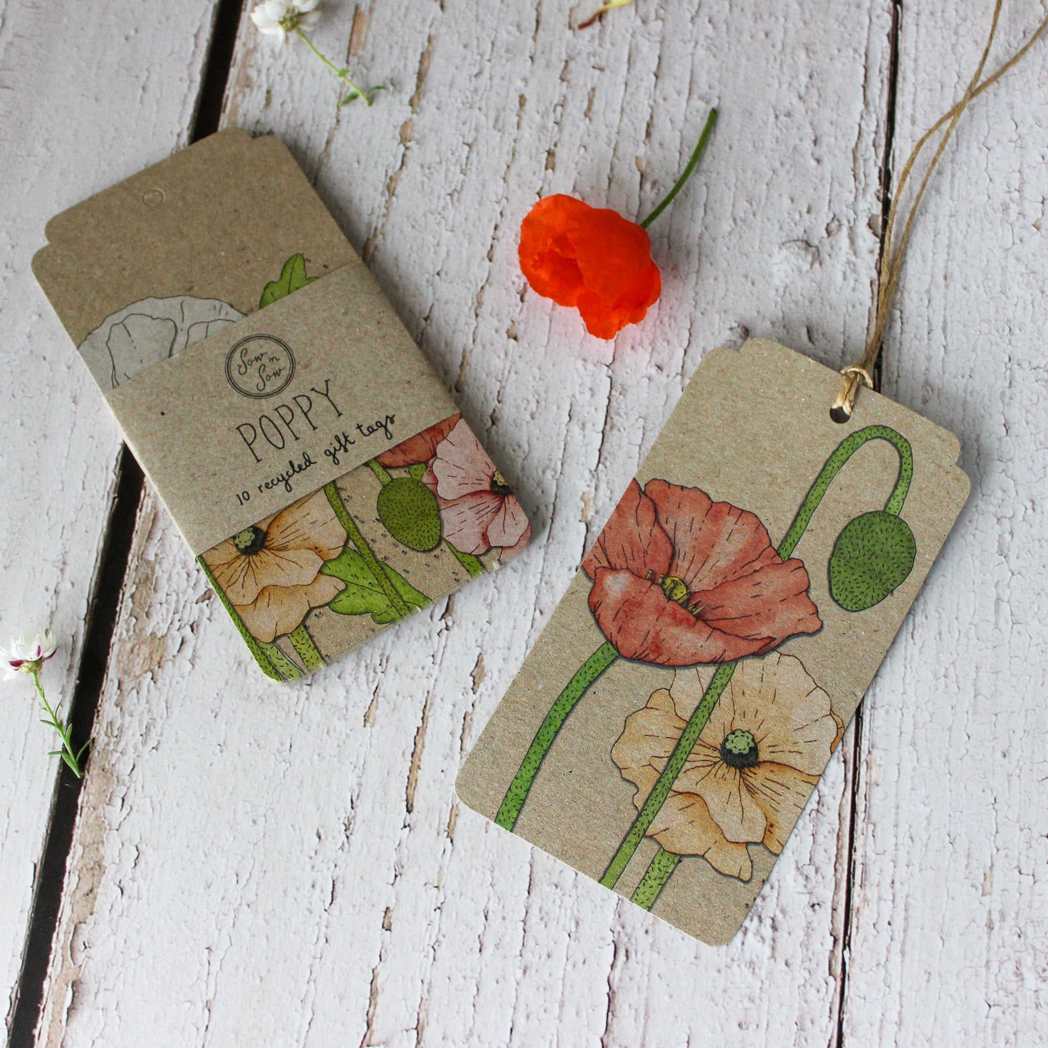 Sow 'n Sow Gift Tags : Poppy