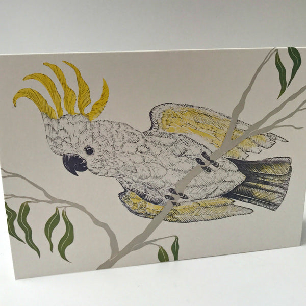 Cockatoo Card (Last Stock)