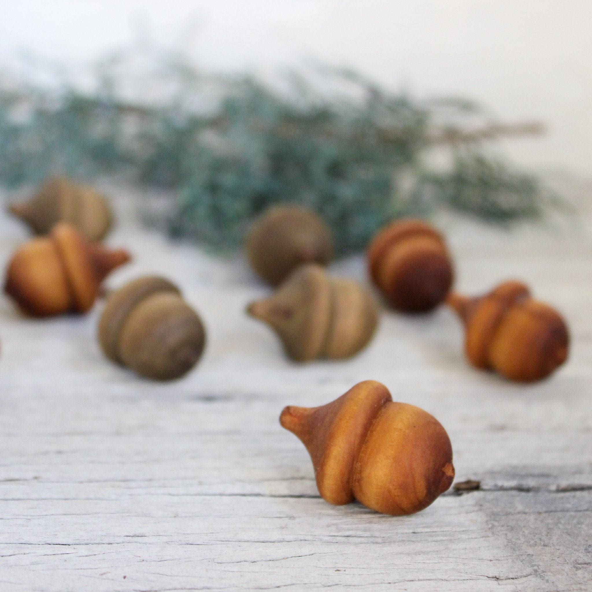 Little wooden acorns plant-dyed by hand at Tribe Castlemaine