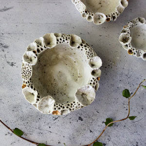 Rock Coral Dishes Marbled