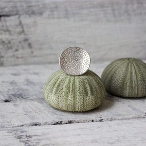 Silver Coral Dish Rings