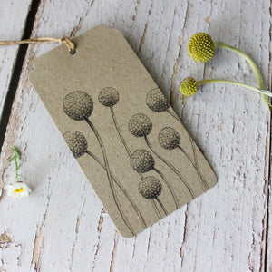 Sow 'n Sow Gift Tags : Billy Buttons