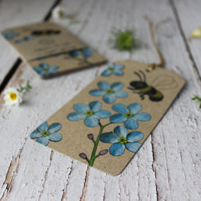 Sow 'n Sow Gift Tags : Forget-me-not