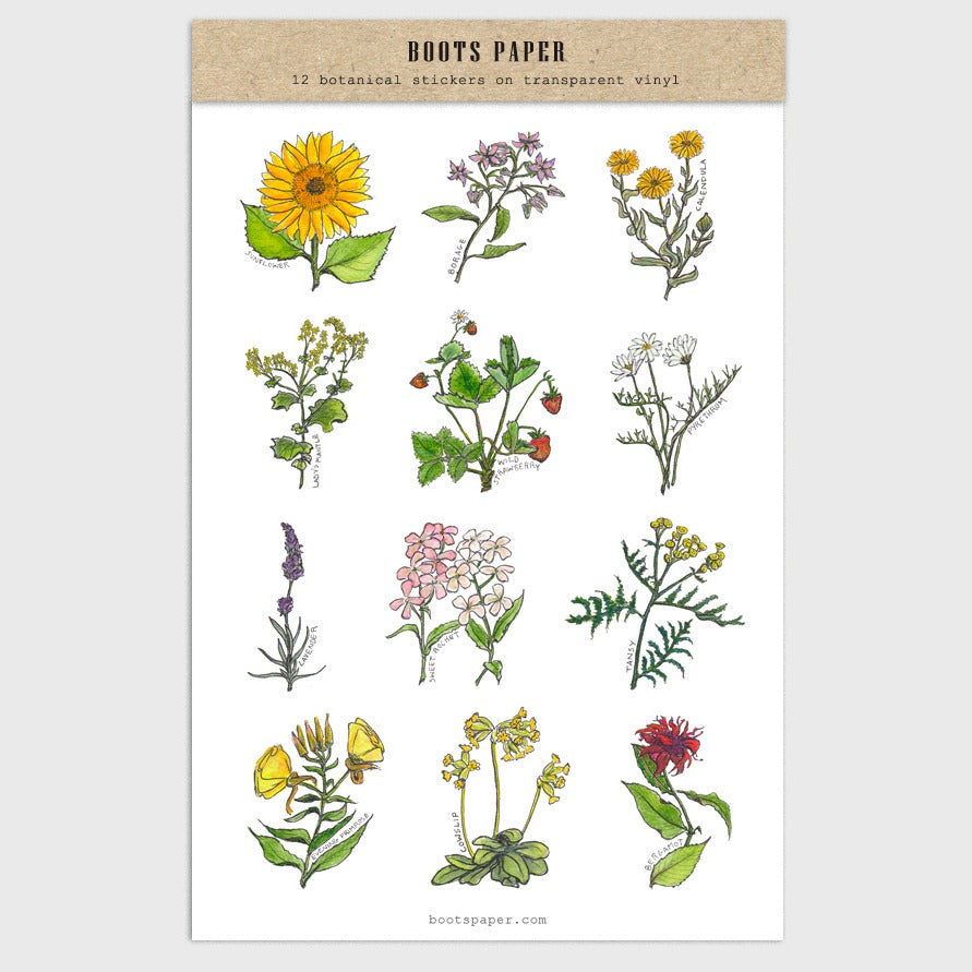 Beautiful hand-drawn illustrations of botanical flowers in this sheet of transparent stickers made by Boots Paper available at Tribe Castlemaine