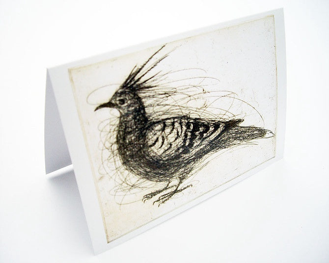 Crested Pigeon Card (Last Stock)