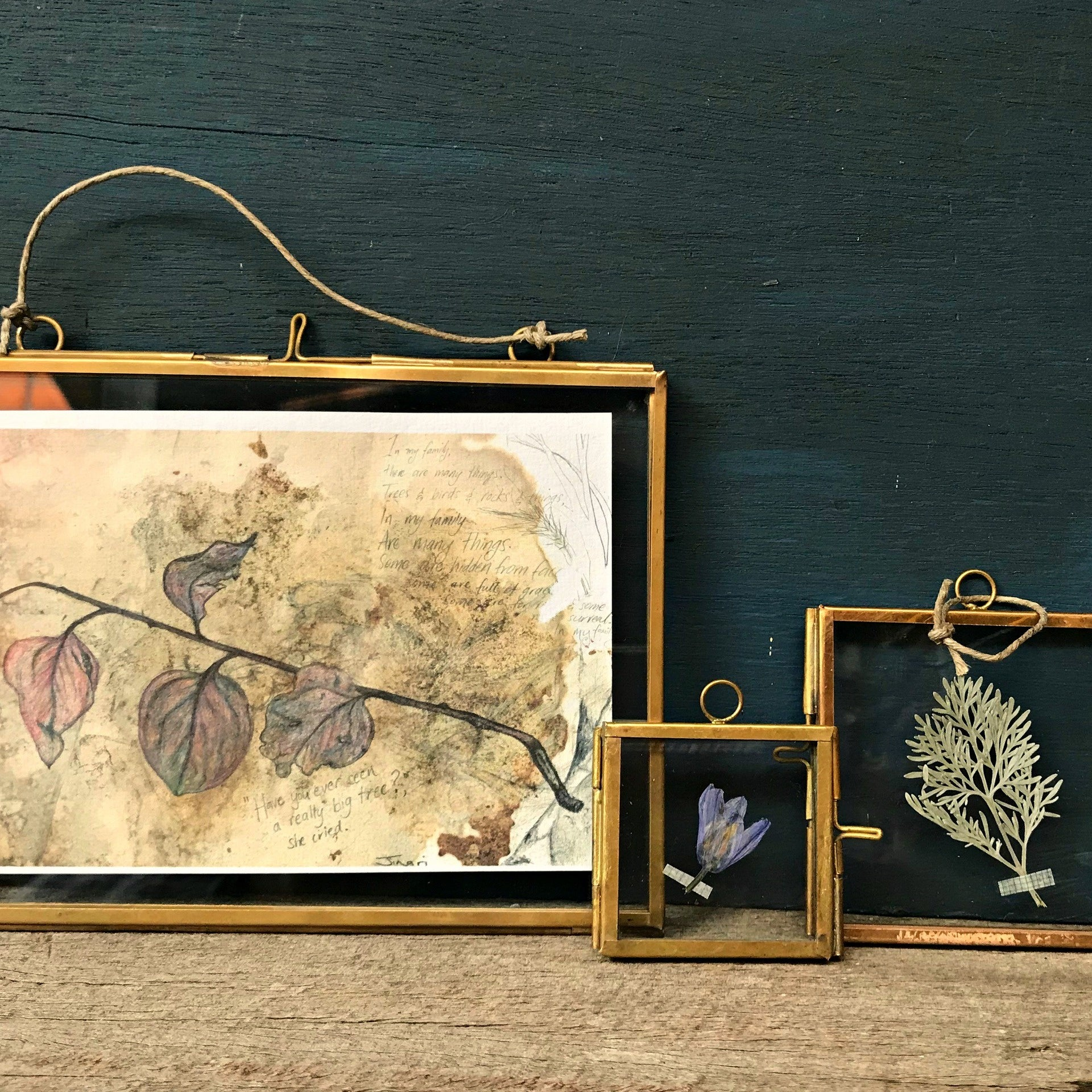 Glass and brass frames available at Tribe Castlemaine