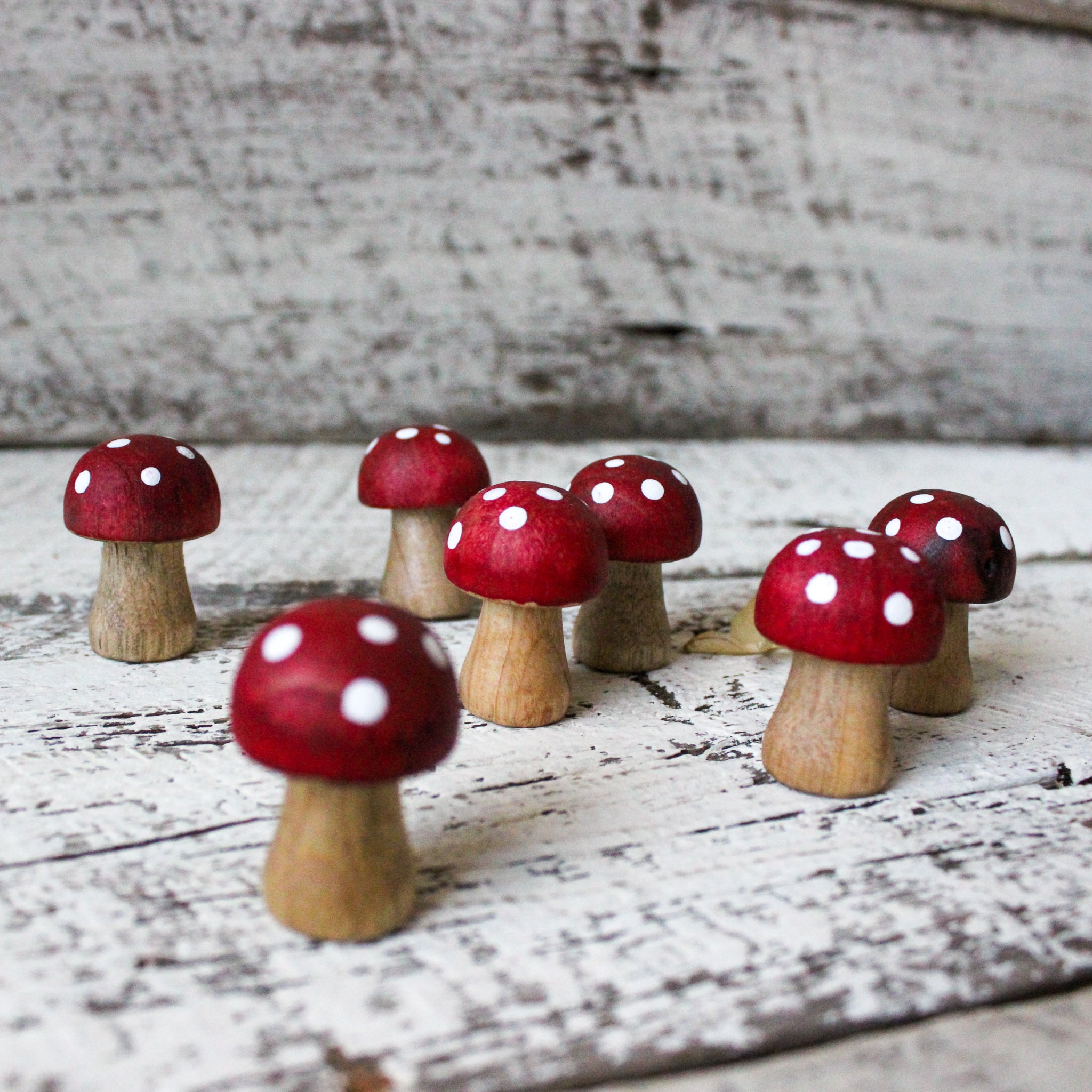 Little wooden toadstools hand painted made by Elfin Trail