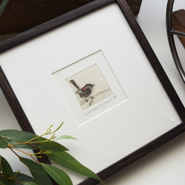 Bridget Farmer's original dry point etchings of Australian native birds handmade in Australia available at Tribe Castlemaine