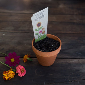 Gift of Seeds : Secret Garden