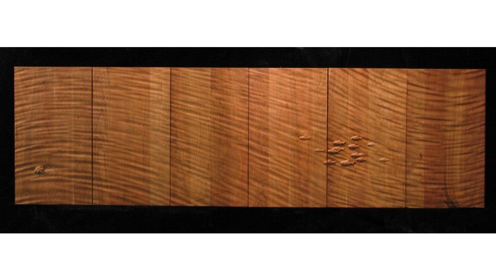 Textured Door with Angelfish