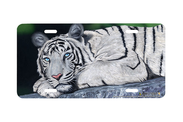 Airstrike® White Tiger License Plate-Baby Blues by Jason Fetko-743