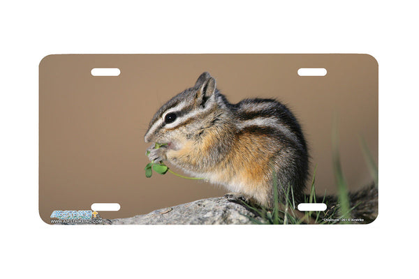 "Airstrike® 261-""Chipmunk"" Chipmunk License Plates"