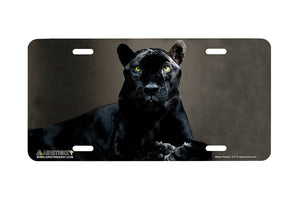 "Airstrike® 517-""Black Panther Portrait"" License Plates"